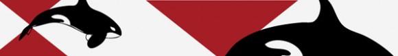 post-logo-design-for-x-orca-700x85