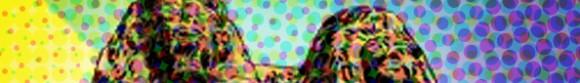 post-websites-content-king-n-queen-camilo-graphics-700x85