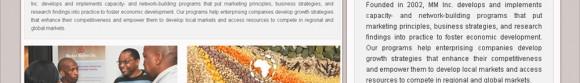 ss-camilo-graphics-web-market-matters-700x466